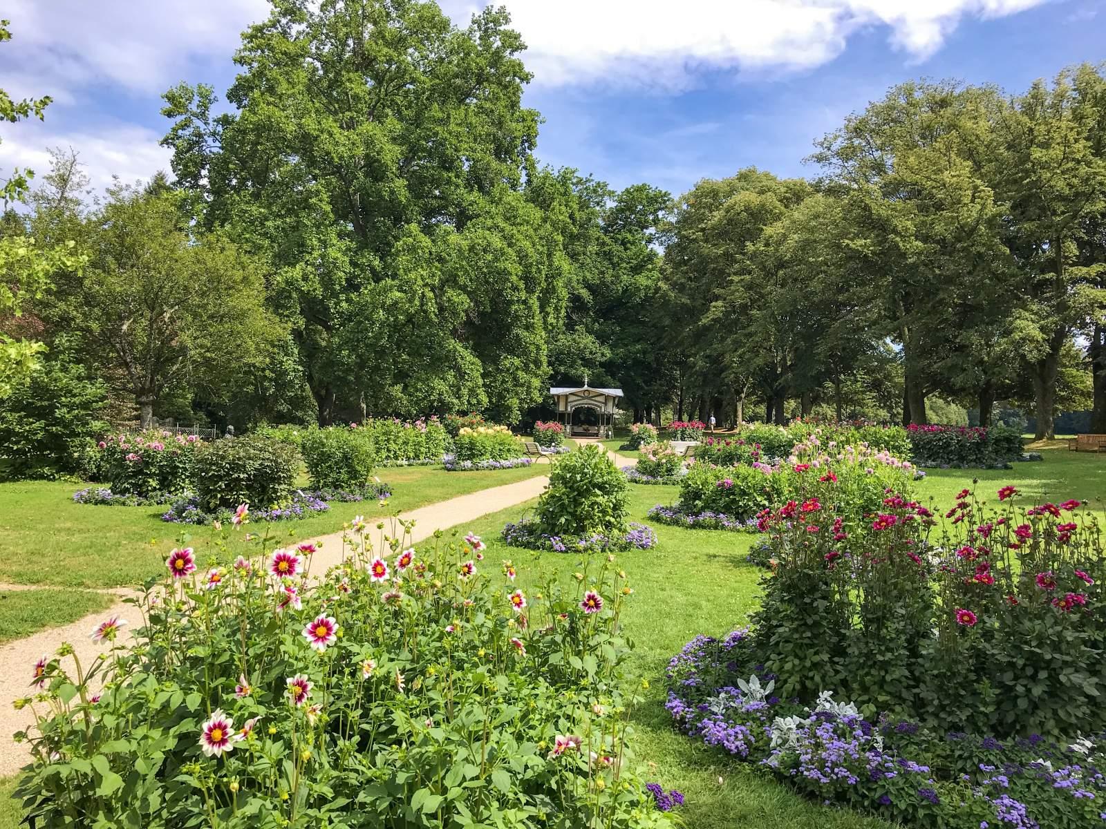 Dahlienblüte im Dahliengarten an der Klosterwiese der Lichtentaler Allee in Baden-Baden 2019.